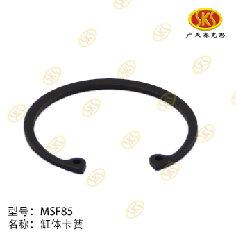 SNAP RING-ZF 894-1501